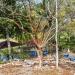 Belize-Resort-Ready-Property-near-San-Ignacio-Town19