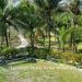 Belize-Resort-Ready-Property-near-San-Ignacio-Town25