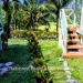 Belize-Resort-Ready-Property-near-San-Ignacio-Town27