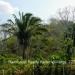 Belize-Resort-Ready-Property-near-San-Ignacio-Town28