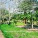 Belize-Resort-Ready-Property-near-San-Ignacio-Town33