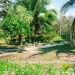 Belize-Resort-Ready-Property-near-San-Ignacio-Town34