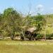 Belize-Resort-Ready-Property-near-San-Ignacio-Town36