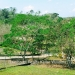 Belize-Resort-Ready-Property-near-San-Ignacio-Town39