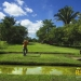 belize-golf-course-for-sale-cayo1