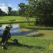 belize-golf-course-for-sale-cayo4
