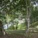 belize-riverfront-home-for-sale-in-bullet-tree-falls-village-7