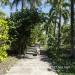 Belize-Casa-del-Caballo-Blanco-for-Sale10