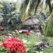Belize-Home-Business-Al-Tun-Ha39