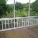 Large Lychee Farm in Belize 18