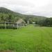 Large Lychee Farm in Belize 19
