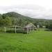 Large Lychee Farm in Belize 20