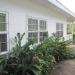 Large Lychee Farm in Belize 23