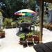 1_Belize-Hacienda-Style-Home-and-Cabin2