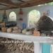 Hacienda Style Home & Cabin Cristo Rey4