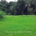 Belize-Small-home-on-15.36-Acres-3