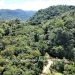 Belize-Lot-in-Rainforest-of-Cayo-District1