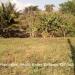 Residential Lot in Santa Elena1