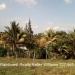 Residential Lot in Santa Elena6