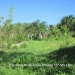 3.5 Acre Lot in Esperanza, Cayo2