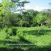 3.5 Acre Lot in Esperanza, Cayo4