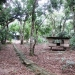 Five Acres western Belize with Home4