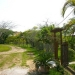 Belize Cottage for Sale in Succotz - leading to home