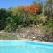 Terraced garden behind pool
