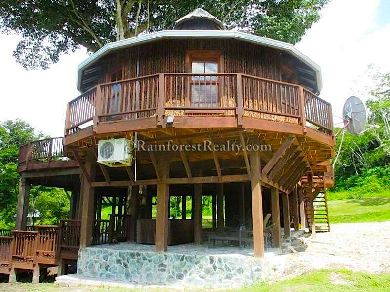 Jungle Property For Sale