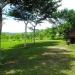 Belize Tree House for Sale Bullet Tree Village 4