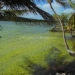 Belize Lagoon Front Shangri-la Property for Sale 4