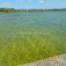 Belize Lagoon Front Shangri-la Property for Sale 42