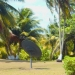 Belize Lagoon Front Shangri-la Property for Sale 71