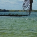 Belize Lagoon Front Shangri-la Property for Sale 86