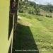 Belize New Home Duplex Bullet Tree Falls Mopan River16