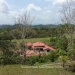 Belize-50-Acres-with-Three-Homes-43
