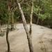 Maya Beach Multi-Unit Investment Property 2