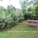 Belize Land Five Acres with Two Homes in San Ignacio Cayo District70