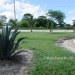 2 Bed 1 Bath Home in San Ignacio Belize4
