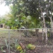 Belize Home for Sale with Pool21