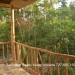 Rainforest Retreat San Ignacio3