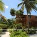Caye Caulker Oceanfront Homes2