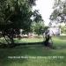 0.5 Acres near Belize City17