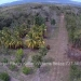Belize-10-Acres-Bullet-Tree-Village14