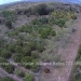 Belize-10-Acres-Bullet-Tree-Village15