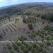 Belize-10-Acres-Bullet-Tree-Village17