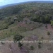 Belize-10-Acres-Bullet-Tree-Village19