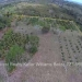Belize-10-Acres-Bullet-Tree-Village21