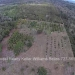 Belize-10-Acres-Bullet-Tree-Village27