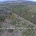 Belize-10-Acres-Bullet-Tree-Village30